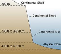 Continental Shelf, Continental Slope, Continental Rise, Abyssal Plain.