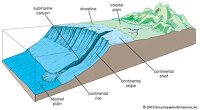 Submarine Canyon