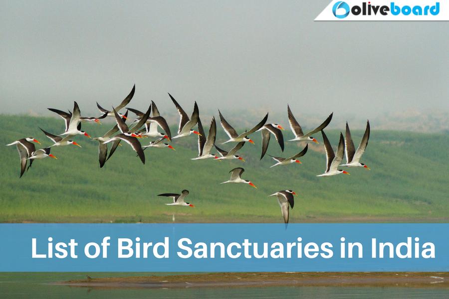 Static GK EBook - List of Bird Sanctuaries in India
