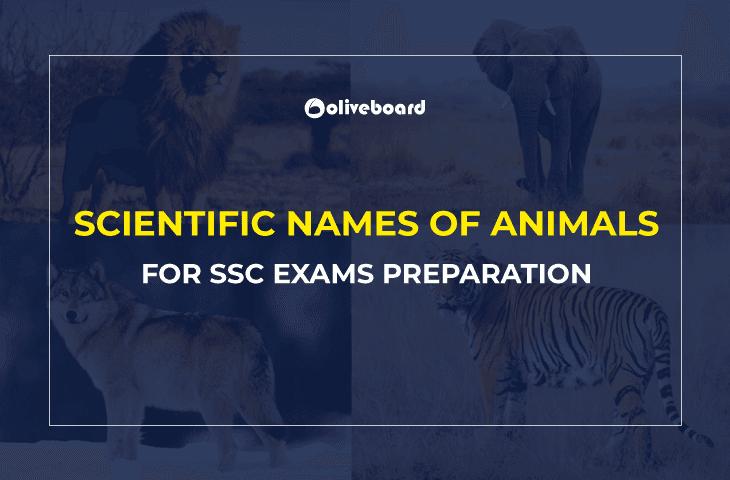 Scientific Names of Animals